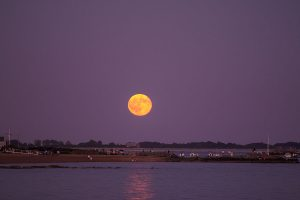 SC_Full_Moon-1-Edit